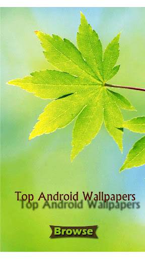 Top Android Wallpapers