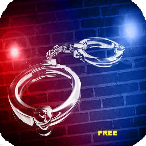 Polis Işıkları