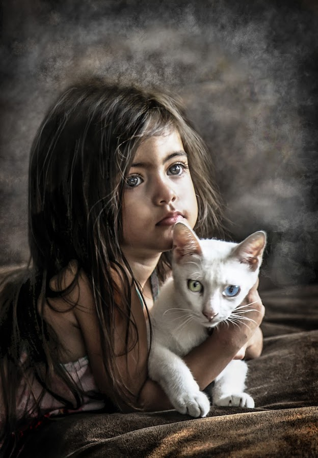 Van Cat girl by Nathalie Gemy - Babies & Children Children Candids ( girl child, cat, child candid, girl, tenderness, adorable, van cat, white cat )