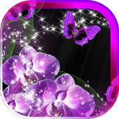 Amazing Orchids live wallpaper