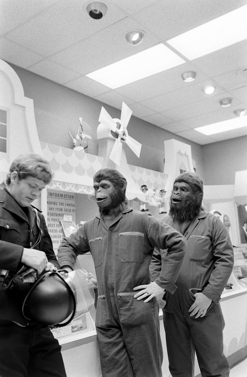 Parting Shots-Apes In Shopping Center