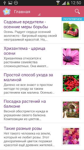 Флорист - Все о цветах