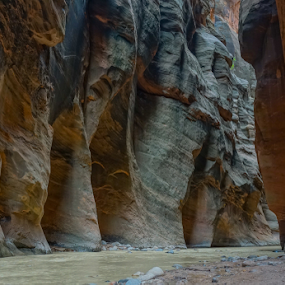 Zion narrows by Eric Ebling - Landscapes Caves & Formations ( adventure, vacation, narrows, outdoors, zion, hiking )