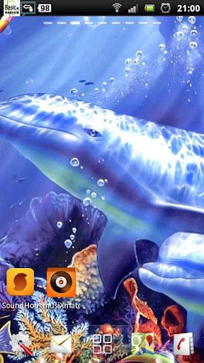 個人化必備免費app推薦|海豚 動態壁紙線上免付費app下載|3C達人阿輝的APP