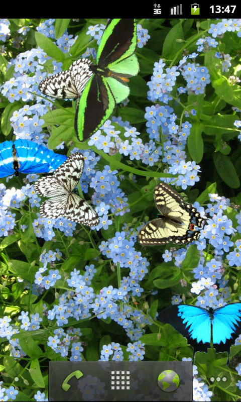 Butterfly Live Wallpaper- screenshot