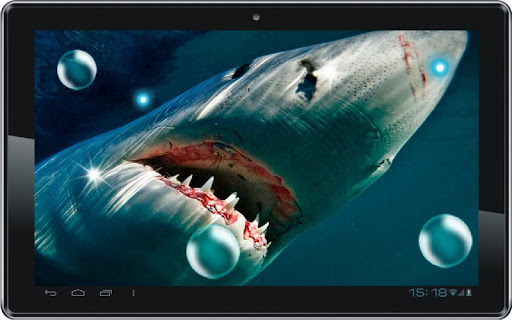 【免費個人化App】Sharks Best HQ live wallpaper-APP點子