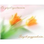 Sevgili Peygamberim