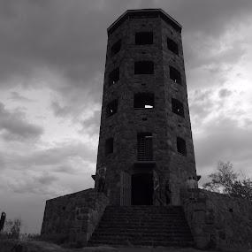 Storm watchers by Alison Gimpel - Black & White Buildings & Architecture ( enger tower, duluth minnesota, landscape )