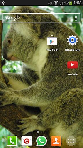 【免費個人化App】Animals of Australia Wallpaper-APP點子