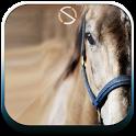 Horse - Start Theme icon
