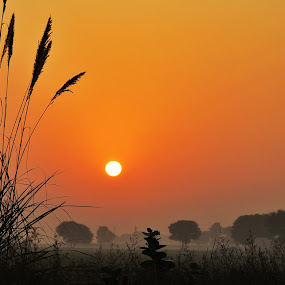 Lest start a new day by Konstanze Singenberger - Landscapes Sunsets & Sunrises ( red sky, sunrise )