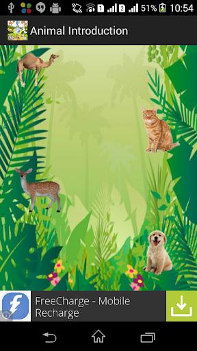 Animal Introduction