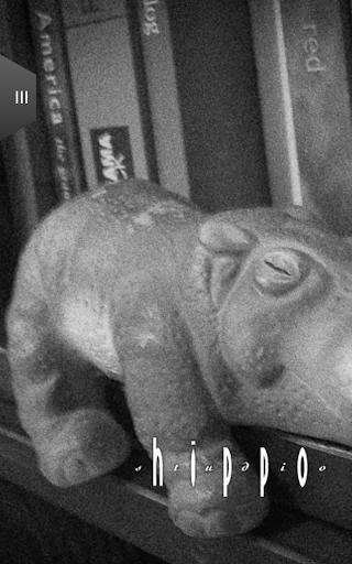 Hippo Studio