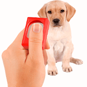 Pet Clicker Training