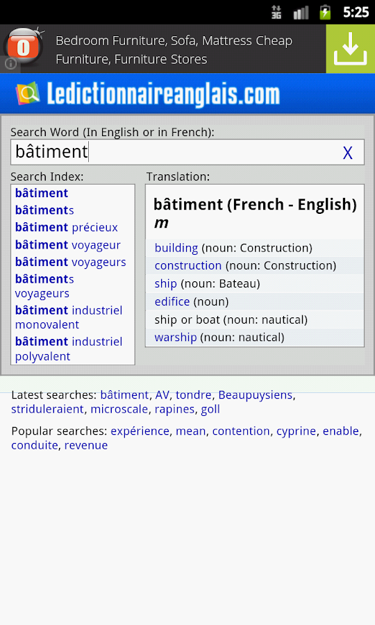 English-French Dictionary- screenshot