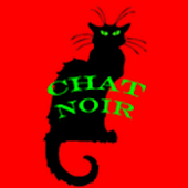 Chat Noir - The Black Cat