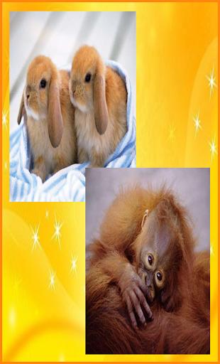 かわいい動物のジグソーパズル