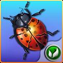 Bug Smasher PRO