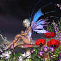 Fairies Wallpapers icon