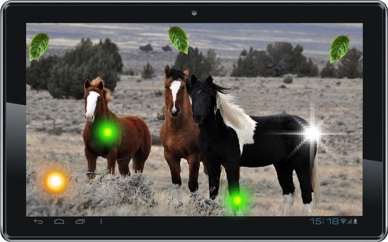 Horses Voices live wallpaper - Android Apps on Google Play