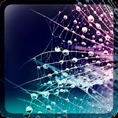 Dew HD Live Wallpaper
