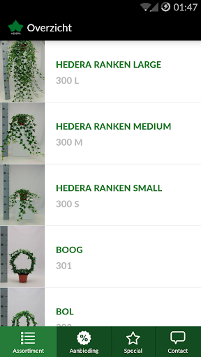 Hedera by Markman