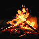 Winter Campfire Live Wallpaper