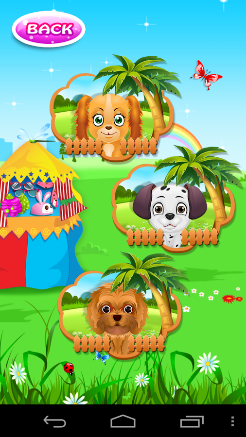 Dog Pet Wash - screenshot