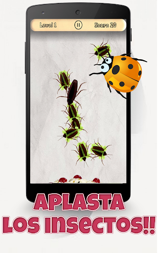 ¡Insectos