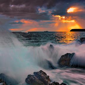 by Nikša Šapro - Landscapes Waterscapes (  )