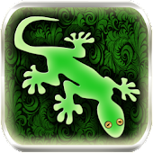 Gecko photo image editor