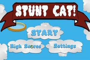 Screenshot of Stunt Cat!