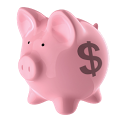 Budgetizer icon