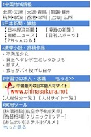 Screenshot of BBINFO CHINA