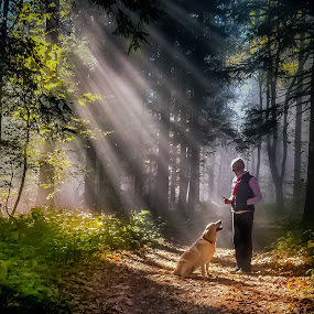 by Alan Grubelić - Instagram & Mobile iPhone ( wood, fog, dresure, dog )
