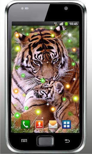 Wild Tigers Hunt HD LWP