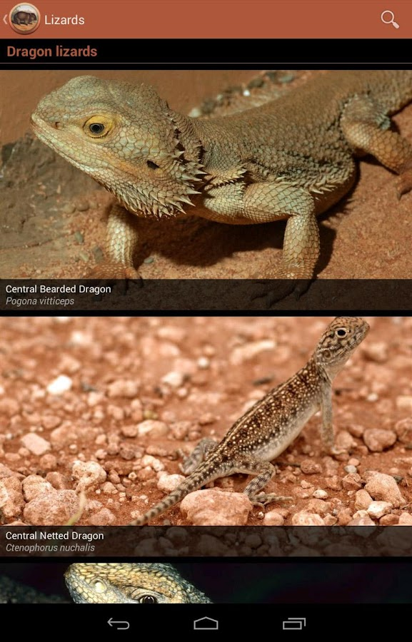 Field Guide South Australia- screenshot