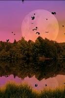 Screenshot of Forest Lake Free