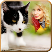Cat Photo Frames