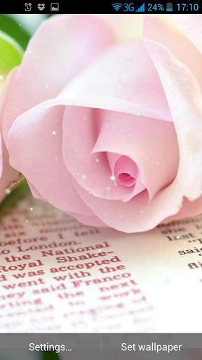 バラは壁紙を生きる