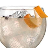 20 Recetas de Gin Tonic