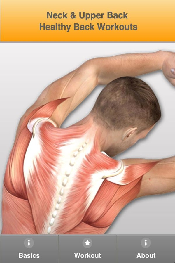 Upper Back Pain Neck Shoulders- screenshot