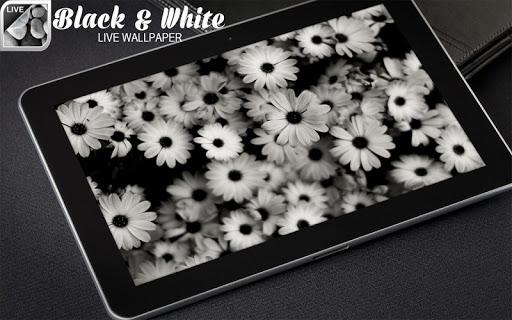 黑與白的動態壁紙 個人化 App-癮科技App