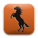 Horse Tack Guide