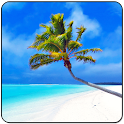 Maldives 3D LWP, True Weather icon