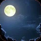 Night Sounds - Nature sounds