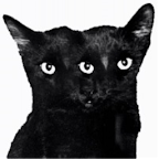 Psychology. Take a look inside