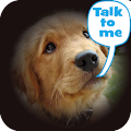 App Dog Lingo - talk to your dog APK for Windows Phone