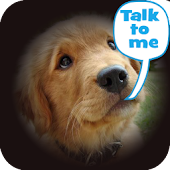 Dog Lingo - talk to your dog