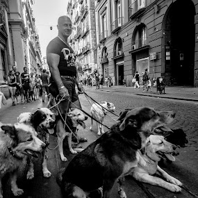 I'm really a gentle soul... by Ethan Fox Miles - Black & White Street & Candid ( naples, animals, dogs, candids, street, napoli, people, italy, portrait,  )